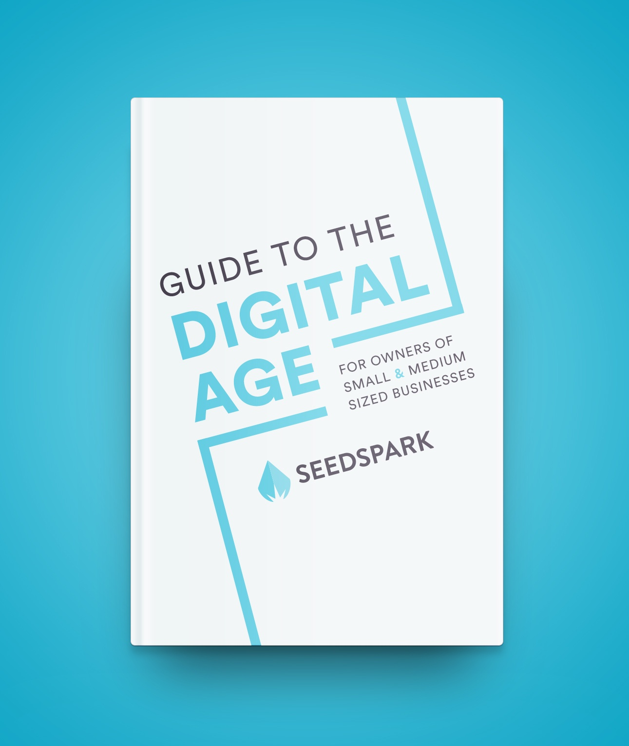 SeedSpark-book-mockup.jpg